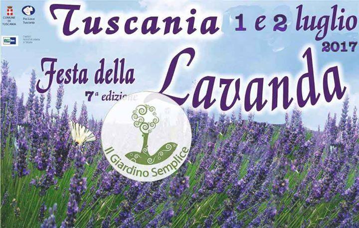 3094_festa-della-lavanda-a-tuscania_image.png