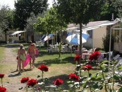 Blu International Camping